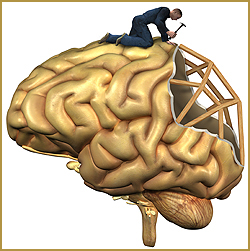 Acquired Brain Injury - Rehabilitation