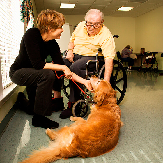 Home Care Services and Pet Therapy